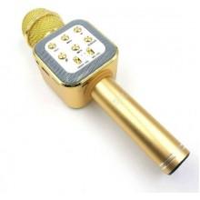 Беспроводной микрофон для караоке WSTER WS-1818 (A006556) с функцией изменения голоса Gold